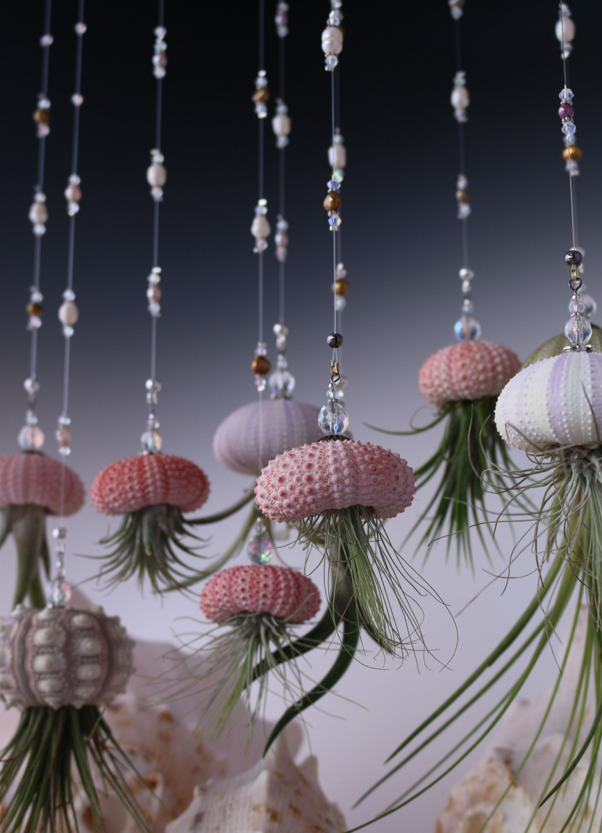 Hanging Jellyfish Airplant
